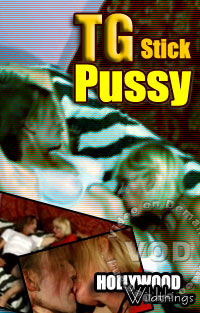 TG Stick Pussy Box Cover