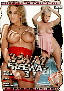 3-Way Freeway 3 Box Cover