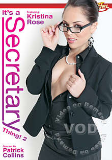 It's A Secretary Thing! 2 Box Cover