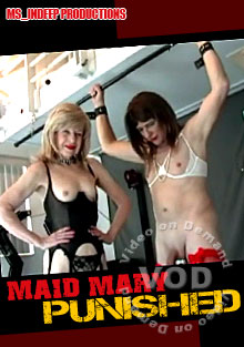Maid Mary Punished Box Cover