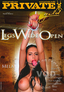 Legs Wide Open Box Cover