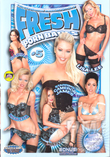 Fresh Porn Babes #5 Box Cover