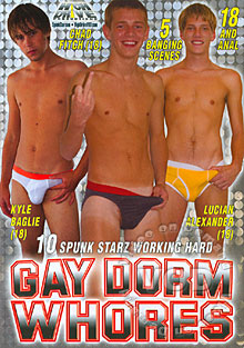 Gay Dorm Whores Box Cover