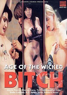 Age Of The Wicked Bitch Box Cover