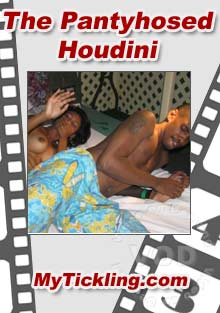 The Pantyhosed Houdini Box Cover