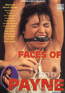 Faces Of Payne Box Cover