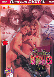 Lesbian Bitches 2 Box Cover