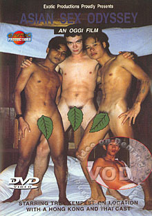 Asian Sex Odyssey Box Cover
