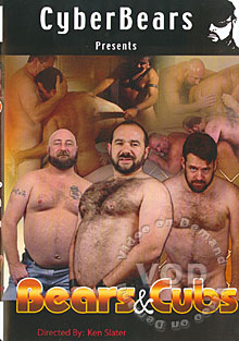 Bears & Cubs Box Cover