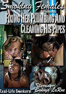 Fixing Her Plumbing And Cleaning His Pipes Box Cover