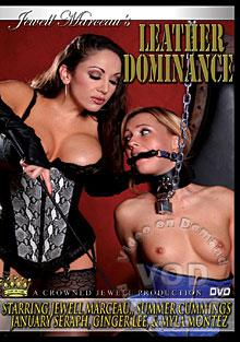 Leather Dominance Box Cover