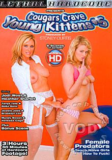 Cougars Crave Young Kittens #5 Box Cover