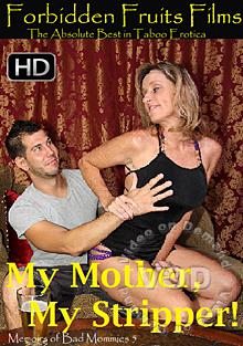 Memoirs Of Bad Mommies 5 Box Cover