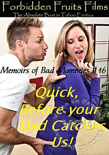 Memoirs Of Bad Mommies #16 Box Cover