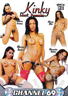 Kinky Black Trannies Box Cover