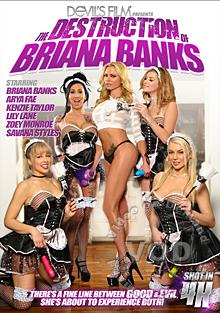 The Destruction Of Briana Banks Box Cover