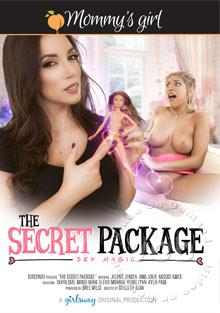 The Secret Package Box Cover