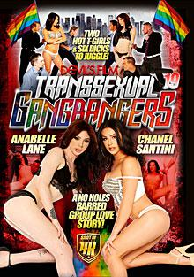 Transsexual Gangbangers 19 Box Cover