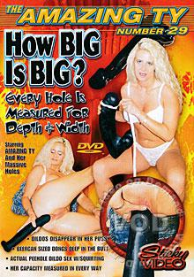 The Amazing Ty 29: How Big is Big? Box Cover