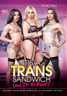 It's A Trans Sandwich (And I'm The Meat!)