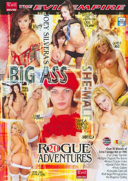 Rogue Adventures 20 Box Cover