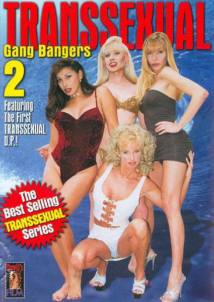 Transsexual Gang Bangers 2 Box Cover