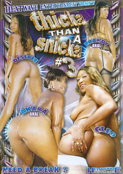 Thicka Than A Snicka #3 Box Cover