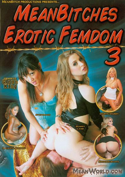 Mean Bitches Erotic Femdom 3 Box Cover