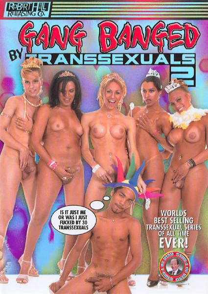 Gang Banged By Transsexuals 2 Box Cover