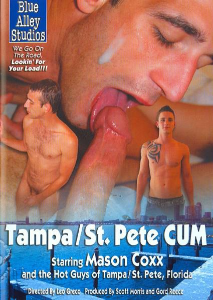 gay motel tampa st pete