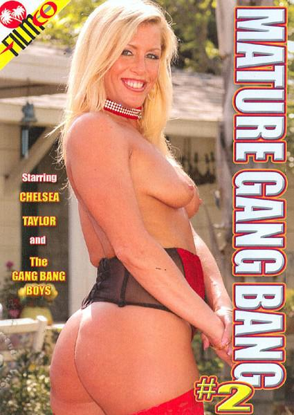 Mature Gang Bang 2 Box Cover