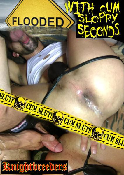 Flooded With Cum Sloppy Seconds Box Cover