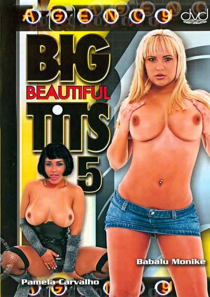 Big Beautiful Tits 5 Box Cover