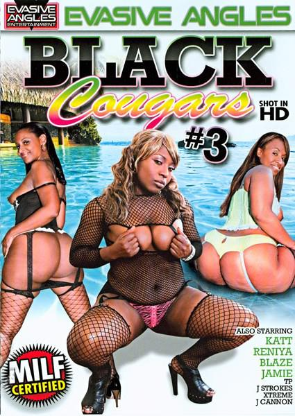 Black Cougars #3 Box Cover