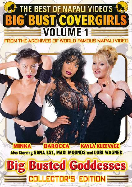 The Best of Napali Video's Big Bust Covergirls Volume 1 Box Cover