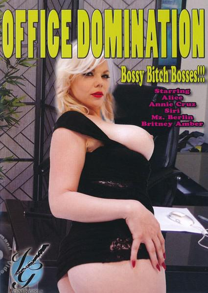 Office Domination Box Cover