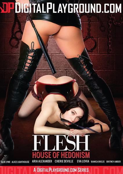Flesh: House Of Hedonism Box Cover