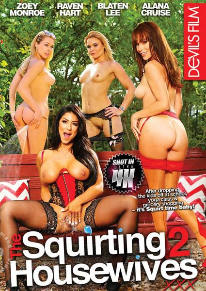 The Squirting Housewives 2 Box Cover