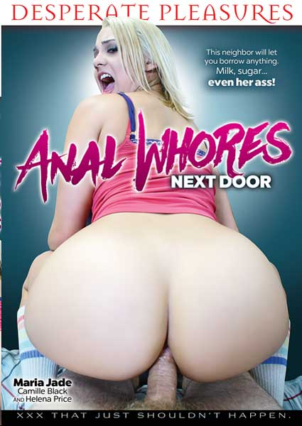 Anal Whores Next Door Box Cover