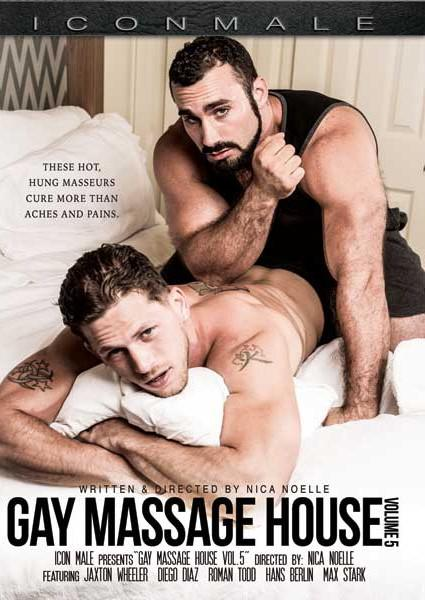 Gay Massage House Vol. 5 Box Cover