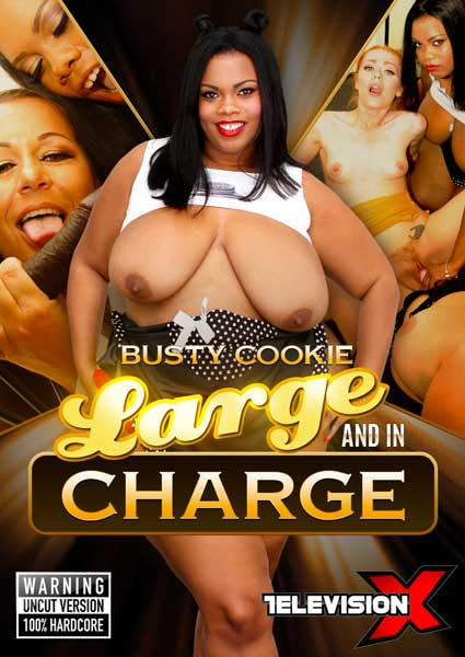 Large And In Charge Box Cover