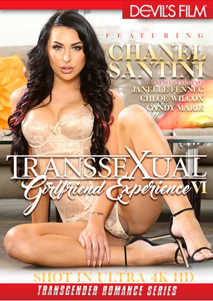 Transsexual Girlfriend Experience VI Box Cover