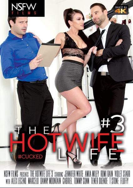The Hot Wife Life 3 Box Cover