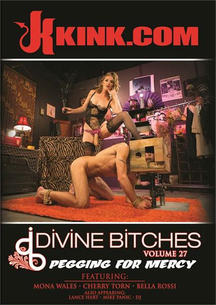 Divine Bitches Volume 27 - Pegging For Mercy Box Cover