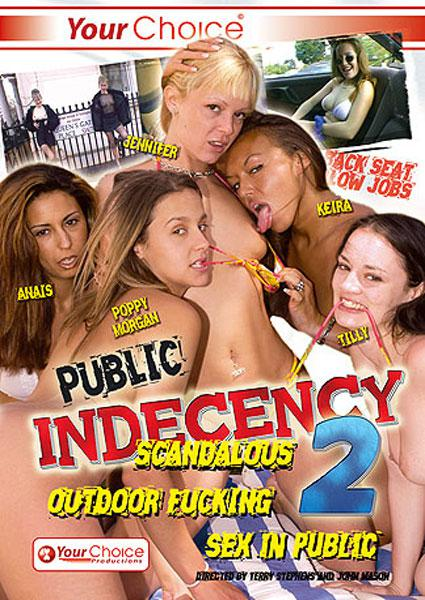 Public Indecency 2 Box Cover