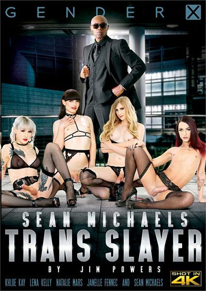 Sean Michaels: Trans Slayer Box Cover