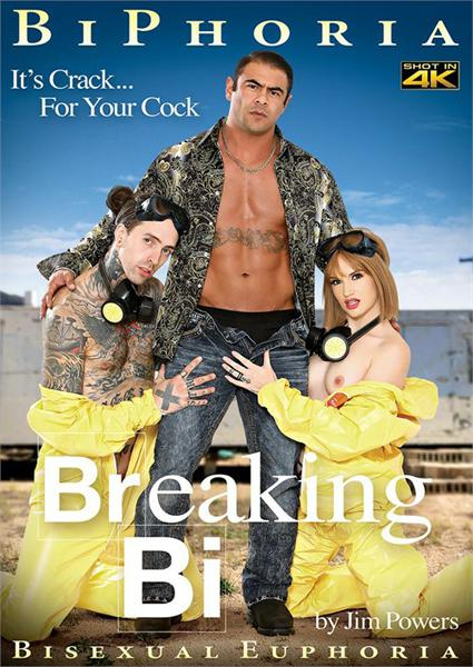 Breaking Bi Box Cover