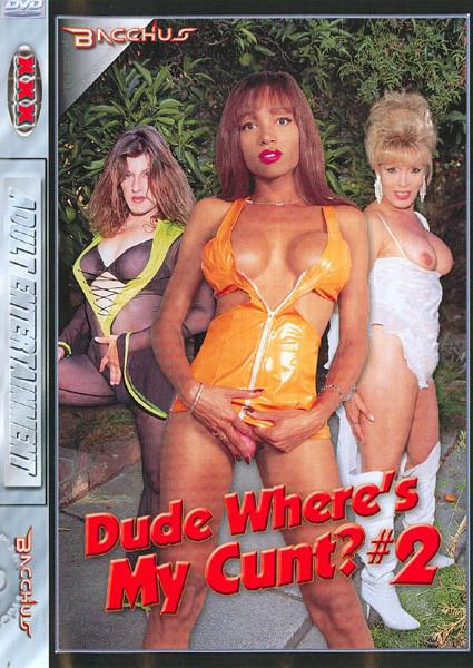 Dude Wheres My Cunt?  #2 Box Cover