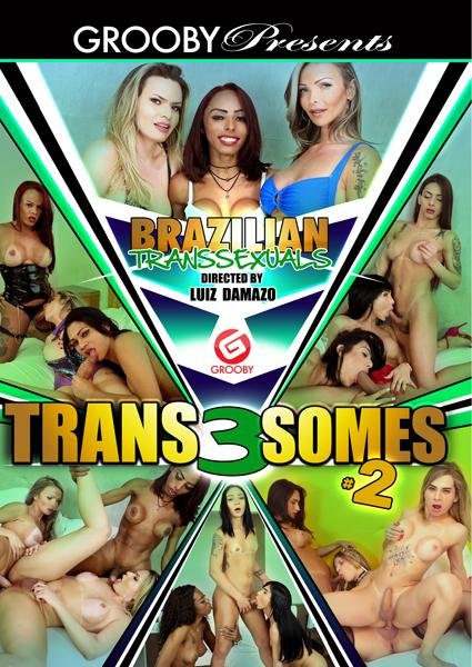 Brazilian Transsexuals - Trans 3Somes 2 Box Cover