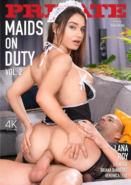 Maids On Duty 2 Box Cover